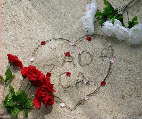 dragoste si trandafiri