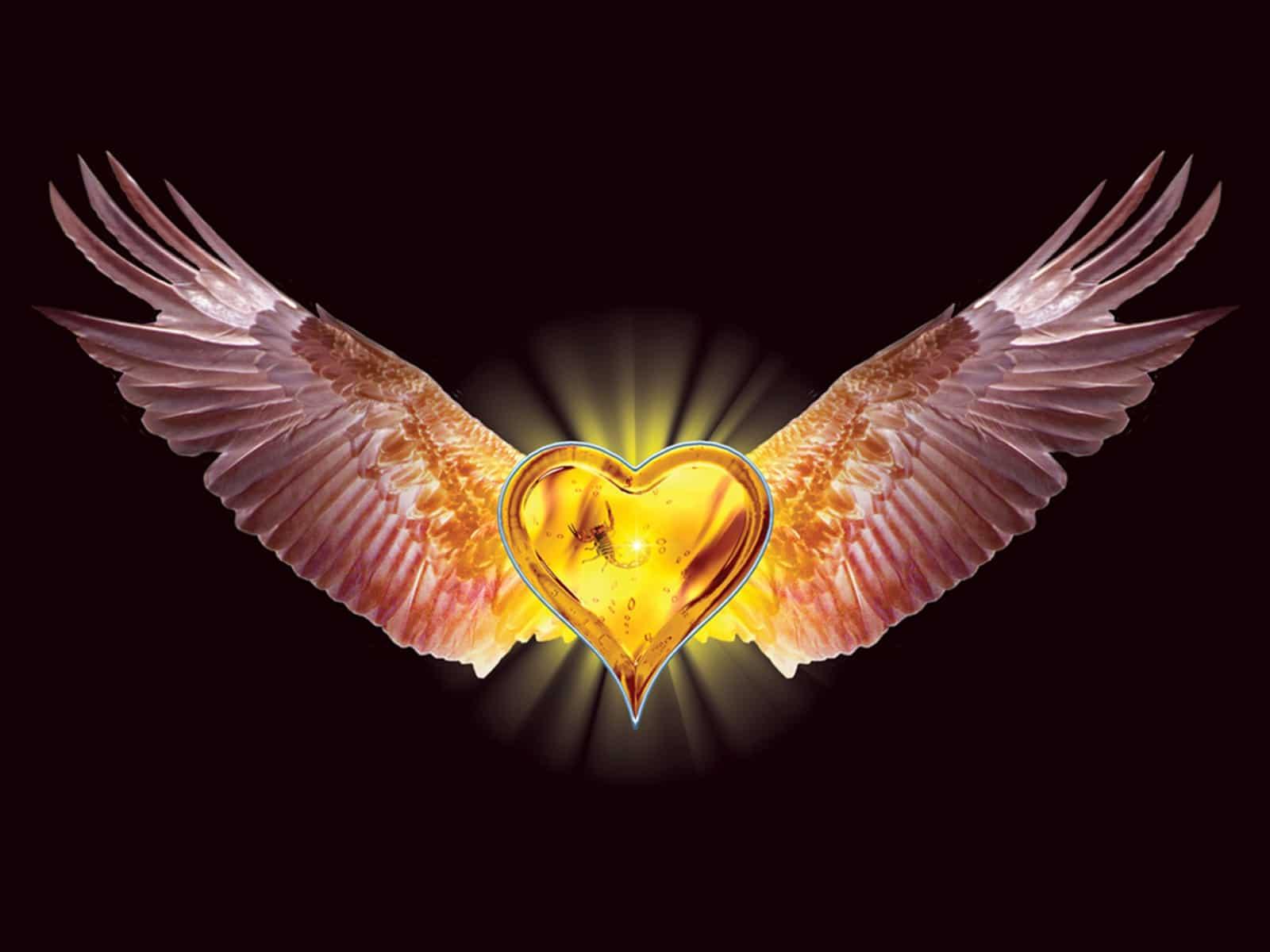 inima-cu-aripi-de-vultur