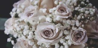 Tu stii ce flori sa alegi pentru o prietena? Trimite-i acasa aceste flori prin serviciul de livrare flori Bucuresti